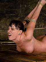 Dana DeArmond, is stripped, bound, and forced to obey.